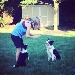 Richmond Dog Training - Dog Training is Owner Training!